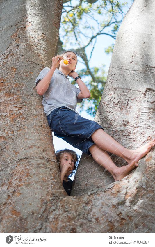 329 Mensch Himmel Kind Natur Jugendliche Baum Freude Junger Mann Junge natürlich Essen Gesundheit Freundschaft Zusammensein Park Kindheit
