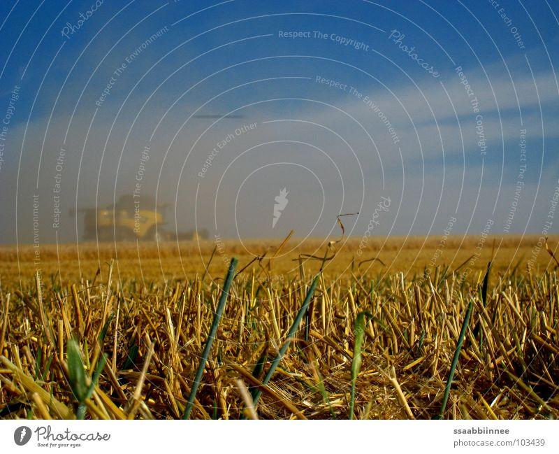 Fata Morgana? Himmel Sommer Wärme Kraft Nebel Technik & Technologie Physik Ernte Kornfeld Staub Mähdrescher