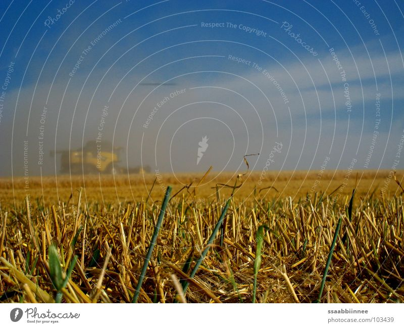 Fata Morgana? Himmel Sommer Wärme Kraft Nebel Kraft Technik & Technologie Physik Ernte Kornfeld Staub Mähdrescher