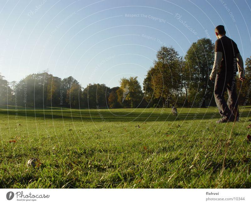 catch me if you can Hund Mann Gras Park Baum Weimar Wiese Herbst Nachmittag Physik joya willy frisby. sonne Wärme