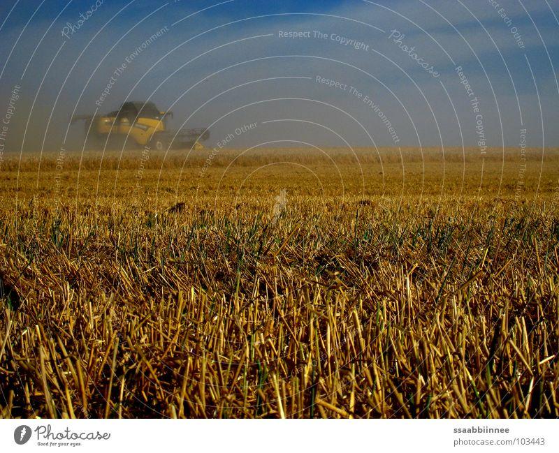 Heißer Sommer Himmel Wärme Kraft Nebel Physik Getreide Ernte Staub Sommertag Mähdrescher