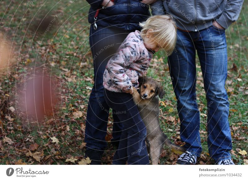 kleinundklein&großundgroß Hund Mensch Frau Kind Mann Tier Erwachsene Tierjunges Herbst Garten Freundschaft Zusammensein Park Familie & Verwandtschaft Kindheit
