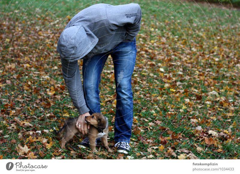 großundklein Mann Erwachsene 1 Mensch Haustier Hund Tierjunges berühren Zusammensein niedlich Sicherheit Schutz Geborgenheit Einigkeit Tierliebe Verantwortung