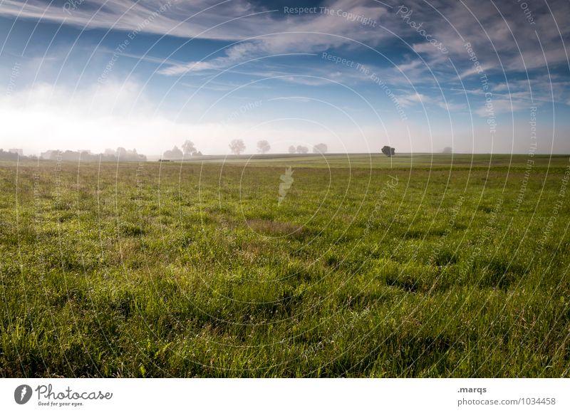 Landluft Umwelt Natur Landschaft Himmel Wolken Horizont Frühling Sommer Klima Schönes Wetter Baum Wiese frisch natürlich saftig Gefühle Idylle Landleben