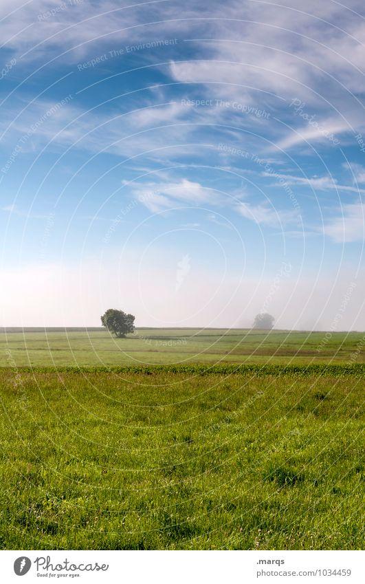 Ländlich Umwelt Natur Landschaft Urelemente Himmel Wolken Horizont Frühling Sommer Klima Schönes Wetter Nebel Baum Wiese Feld Erholung einfach frisch natürlich