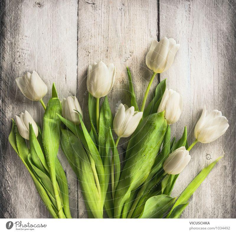 Weiße Tulpen auf dem Holztisch Natur alt Pflanze weiß Blume Blatt Innenarchitektur Frühling Stil Holz Feste & Feiern Hintergrundbild Garten Lifestyle Design Dekoration & Verzierung