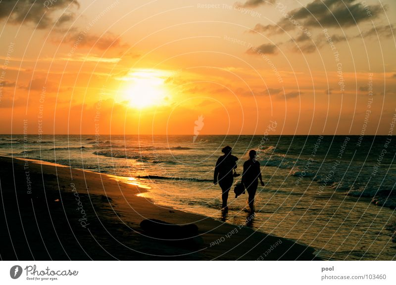 Sonnenuntergang Strand Reflexion & Spiegelung Meer Ferien & Urlaub & Reisen Wellen Wolken Stimmung Karibisches Meer Abenddämmerung Horizont Küste Wasser