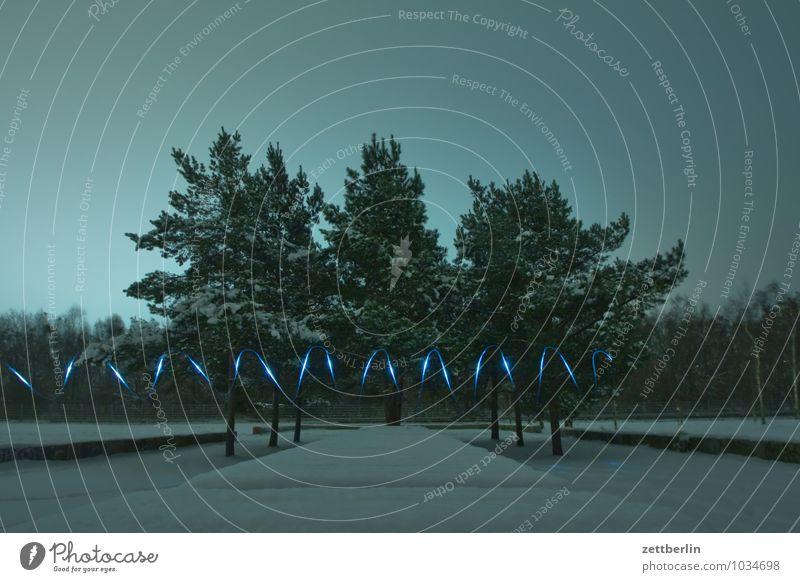 Blinkern im Neuschnee Himmel Baum Winter dunkel Stimmung trist Textfreiraum Silvester u. Neujahr Schneelandschaft trüb Illumination Dezember Lightshow Weihnachtsmarkt Leuchtspur Zickzack
