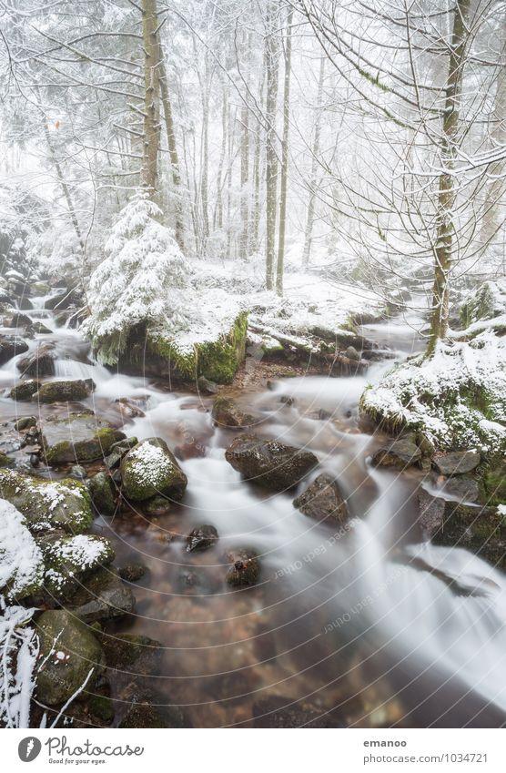 Winter am Bach Natur Ferien & Urlaub & Reisen Pflanze Wasser Baum Landschaft Wald kalt Berge u. Gebirge Schnee Freiheit Felsen Eis Wetter Ausflug