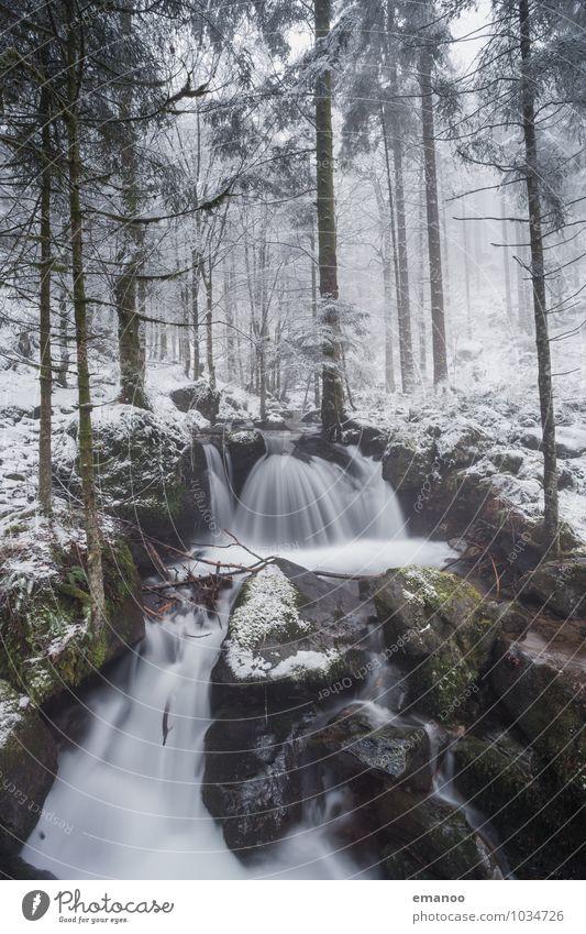 Zastlertal Natur Ferien & Urlaub & Reisen Pflanze Wasser Baum Landschaft Winter Wald kalt Berge u. Gebirge Umwelt Schnee Felsen Eis Wetter Ausflug
