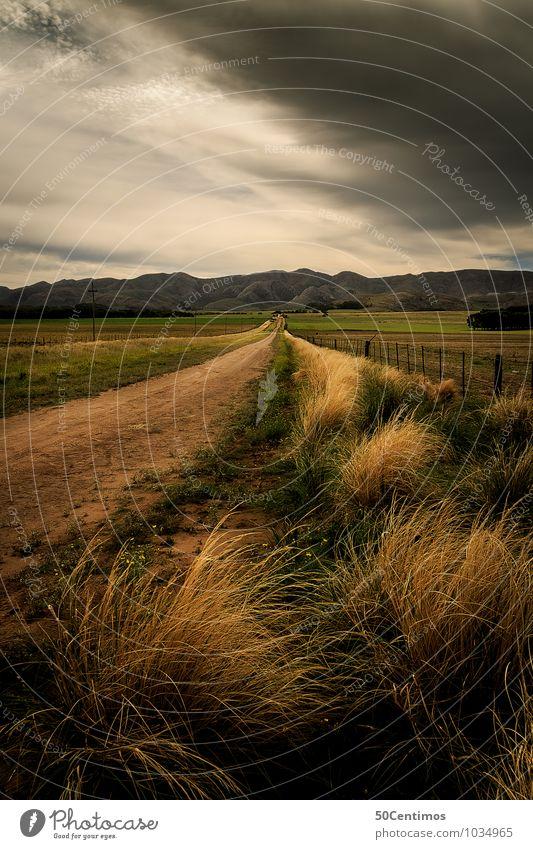 Der Sturm Abenteuer Freiheit Joggen Umwelt Natur Landschaft Wolken Gewitterwolken Sommer Klima Klimawandel schlechtes Wetter Wind Wiese Feld Hügel