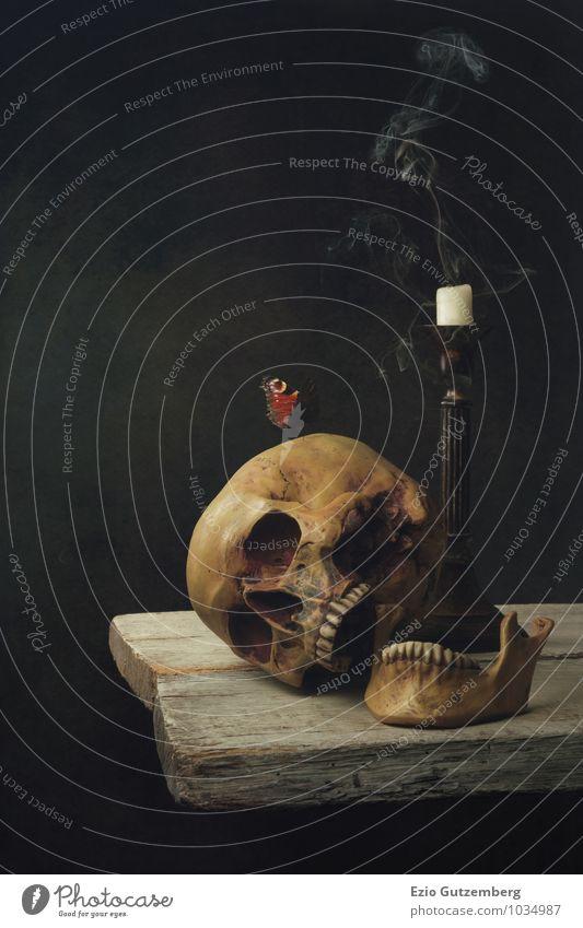 Vanitas Stilleben; Leben, Tod und Auferstehung Mensch Kopf Vergänglichkeit Lebewesen Symbole & Metaphern Zähne Stillleben Paddel