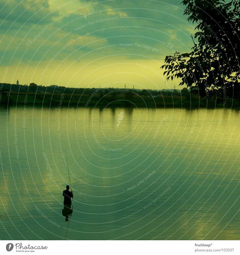 fishermans.... Stimmung Angelrute Haken nass Baum Fischer Mann Abend Angeln Wasser Donau Küste