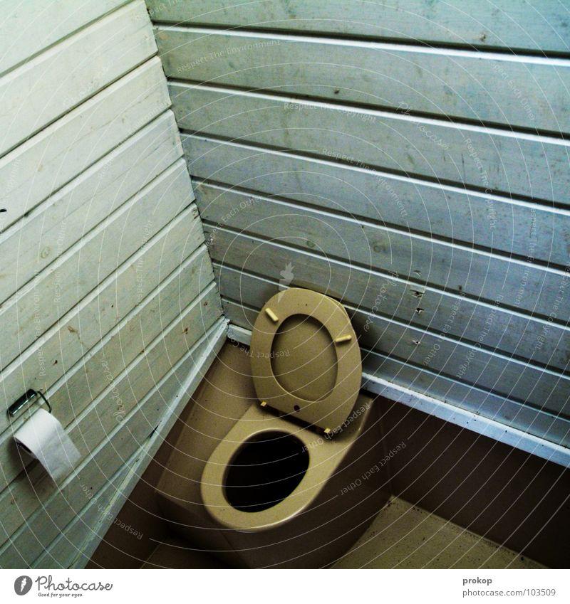 Thron im Eck Holz Linie offen Ecke einfach Toilette Hütte schäbig Geometrie Holzwand baufällig Baracke Toilettenpapier Plumpsklo WCsitz