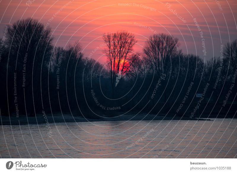 kitsch³. Himmel Natur Ferien & Urlaub & Reisen Stadt Pflanze schön Wasser Sommer Sonne Baum rot Landschaft Ferne Umwelt Küste Freiheit