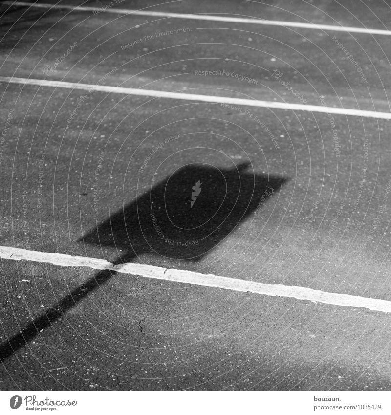 schilderparkplatz. Sonne Sonnenlicht Stadt Park Platz Verkehr Verkehrswege Autofahren Straße Wege & Pfade Schilder & Markierungen Verkehrszeichen Linie Streifen