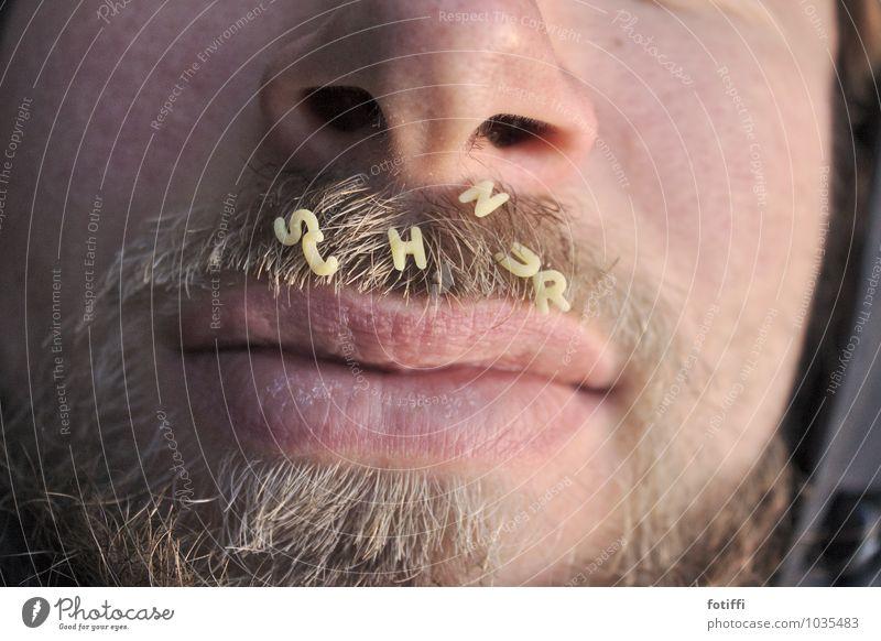 Mann trägt S c h n u r r b a r t Nahaufnahme Lippen maskulin Mund Gesicht Mensch Bart Nase Fell Schriftzeichen Buchstabennudeln buchstabieren Haare & Frisuren