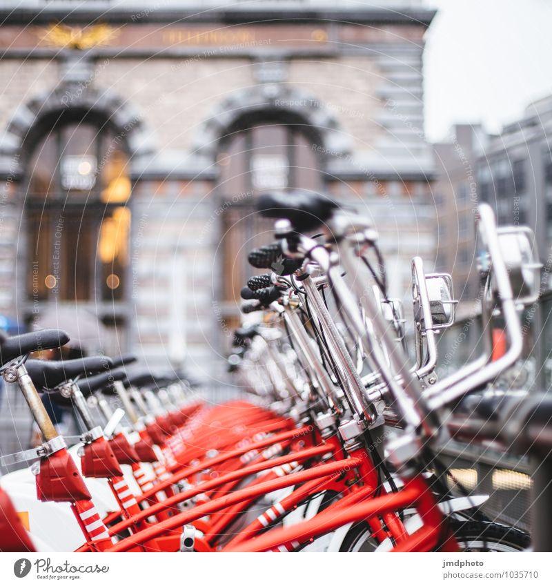 rent-a-bike Ferien & Urlaub & Reisen Farbe Sommer rot Sport Lifestyle Freizeit & Hobby Ordnung Tourismus Fahrrad Perspektive Klima Ausflug Fahrradfahren Kultur