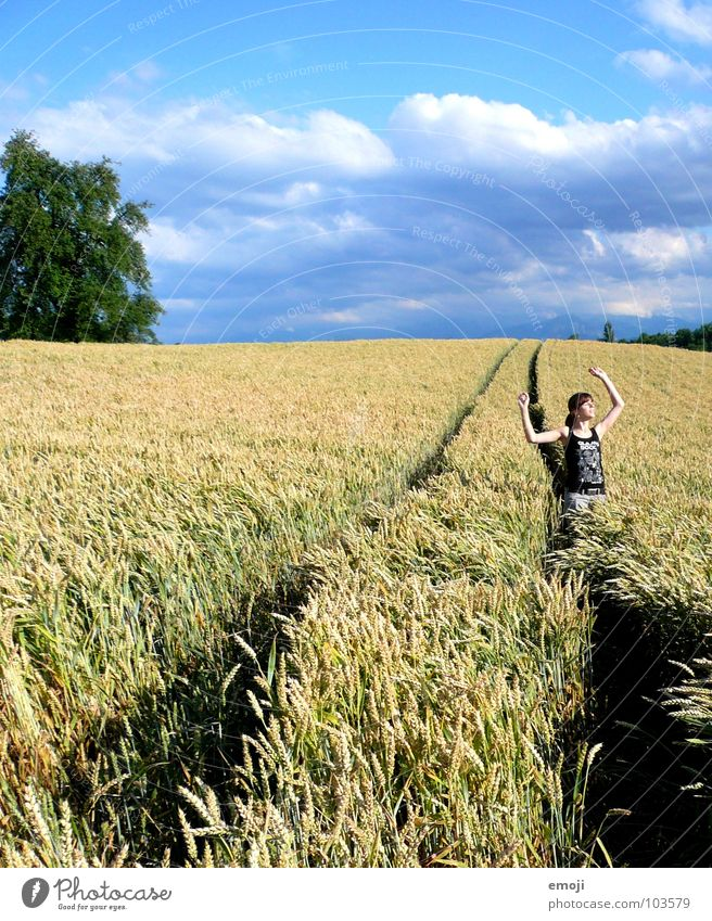 glücklich Frau Mensch Hand Jugendliche Sommer Freude ruhig Wolken springen Frühling Freiheit Glück Wärme Landschaft Luft Zufriedenheit