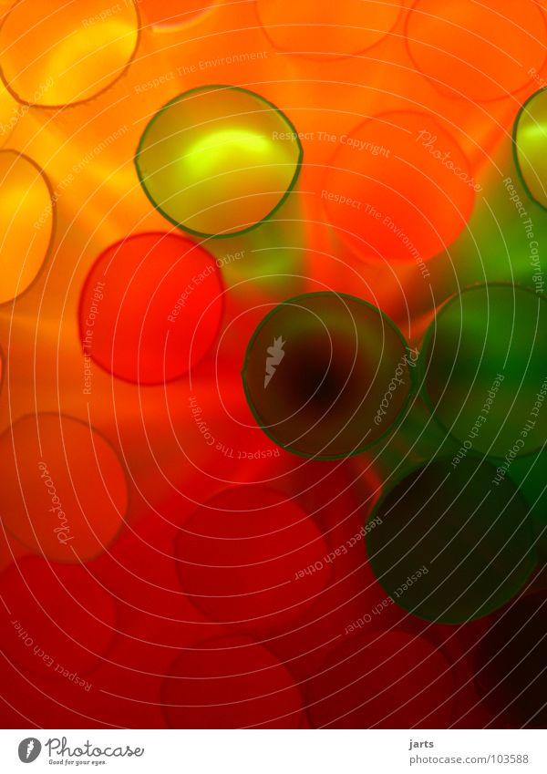 Bunte Welt mehrfarbig Licht grün rot Geburtstag Dekoration & Verzierung Makroaufnahme Nahaufnahme Halm Farbe orange jarts Feste & Feiern