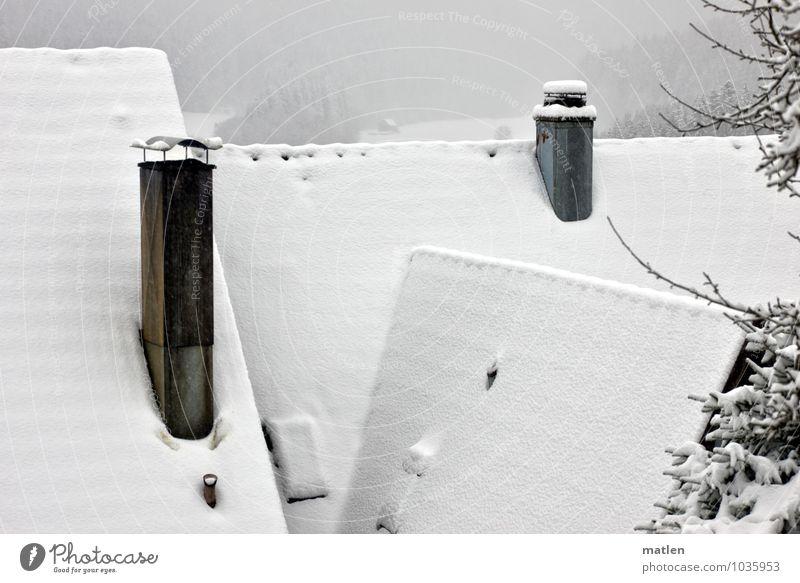 First weiß ruhig Haus schwarz Schneefall Idylle Dach Dorf Schornstein gemütlich Abdeckung Winterstimmung Wintertag Dachfirst