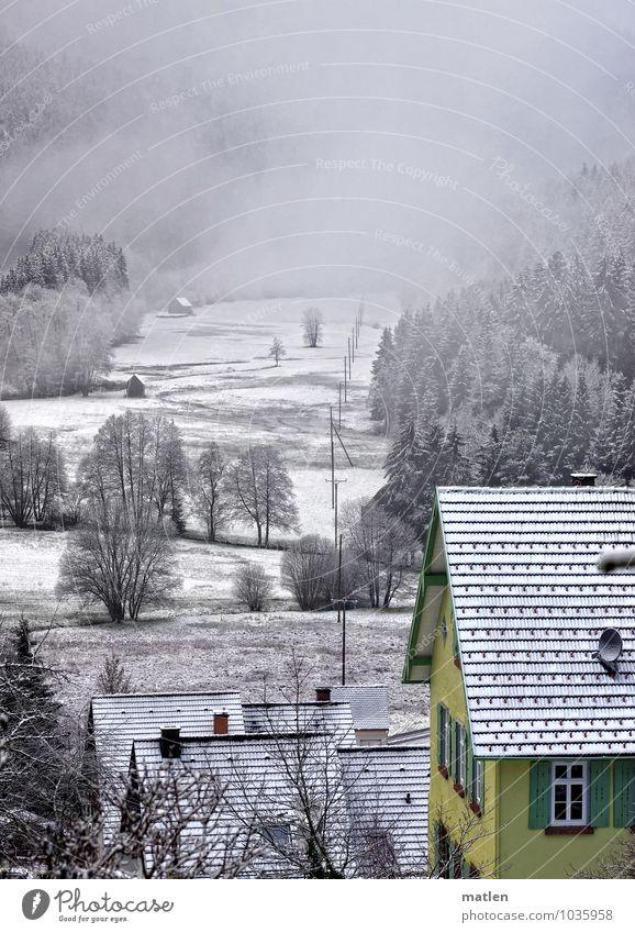Häuserflucht Landschaft Pflanze Wolken Winter Wetter schlechtes Wetter Eis Frost Schnee Baum Wiese Wald Berge u. Gebirge Dorf Menschenleer Haus Fenster grün