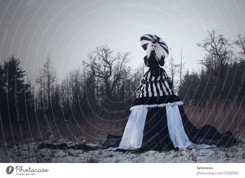 Schneeweißchen Mensch Frau Natur Baum Winter Erwachsene Wiese feminin Mode Eis Feld groß Bekleidung fantastisch Frost