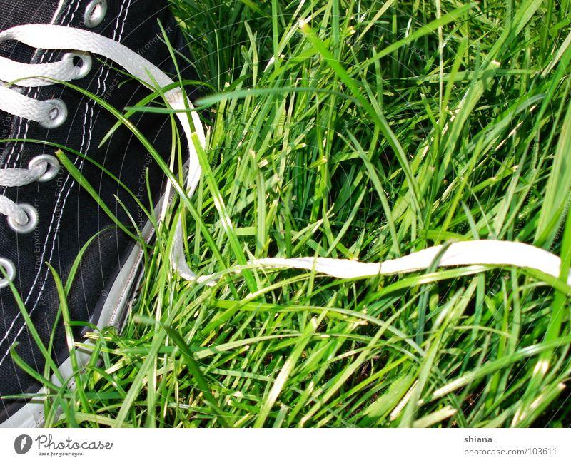 Grasschuhe Schuhe Chucks Schuhbänder Sommer Wiese grün schwarz weiß Turnschuh Frühling frisch Naht Bekleidung Glück