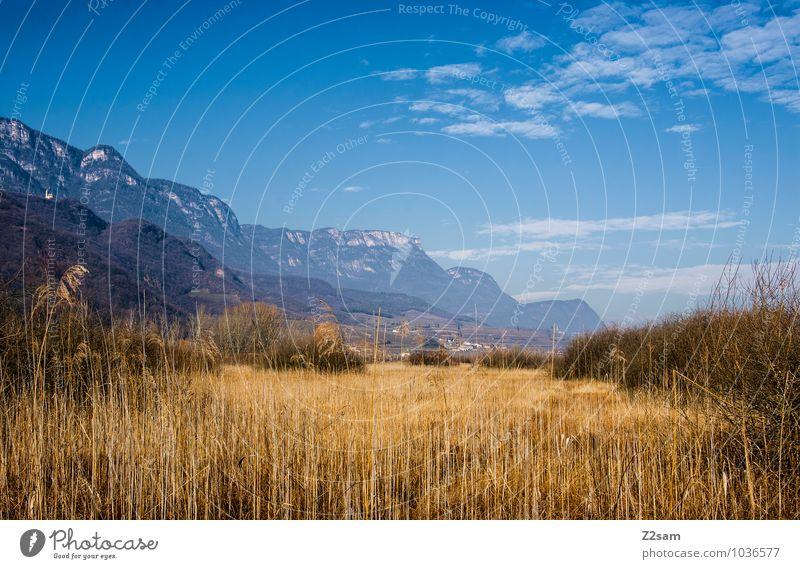 Kalterer See Himmel Natur Ferien & Urlaub & Reisen blau Erholung Einsamkeit Landschaft ruhig Winter Berge u. Gebirge Umwelt Herbst natürlich frisch Idylle Sträucher