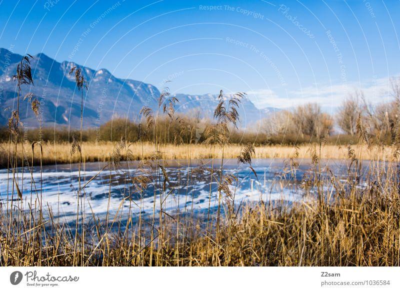 Kalterer See Himmel Natur Ferien & Urlaub & Reisen blau Landschaft Ferne Winter Berge u. Gebirge Umwelt natürlich Horizont Idylle Sträucher Ausflug