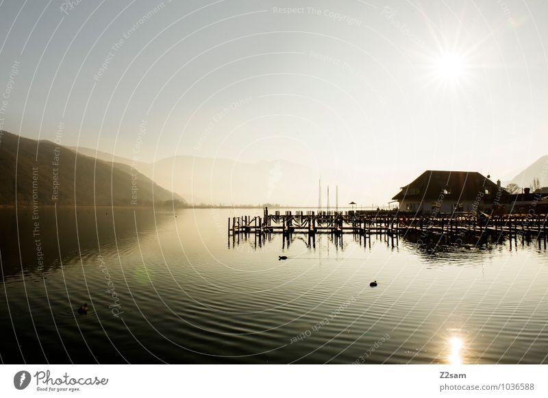 Kalterer See Natur Ferien & Urlaub & Reisen Sonne Landschaft Winter Berge u. Gebirge Umwelt Vogel Nebel frisch Italien Schönes Wetter Seeufer Alpen Steg