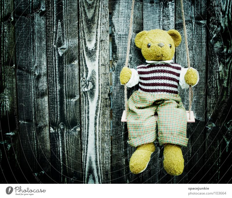 Lonely teddy Wand Holz Fassade Teddybär Schaukel Spielzeug kindlich Trauer Verzweiflung Holzbrett Strukturen & Formen Bär Einsamkeit Traurigkeit sitzen Kindheit
