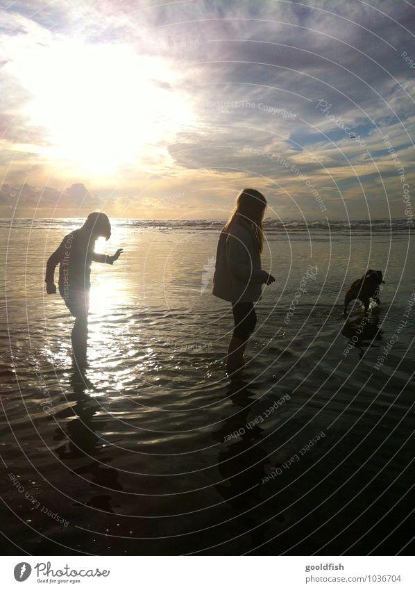 take me to the ocean Ferien & Urlaub & Reisen Sommer Strand Meer Kind Mädchen Junge Geschwister Sonnenaufgang Sonnenuntergang Hund Erholung Glück Lebensfreude