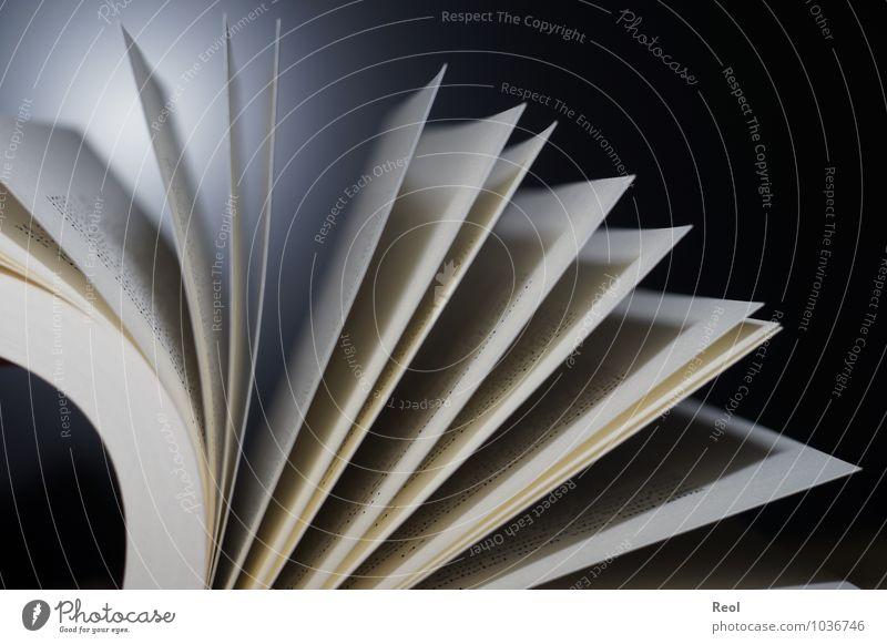 Buch weiß schwarz Schule Arbeit & Erwerbstätigkeit Büro Studium lernen Papier lesen Buchstaben Bildung entdecken Erwachsenenbildung Wissenschaften Beratung