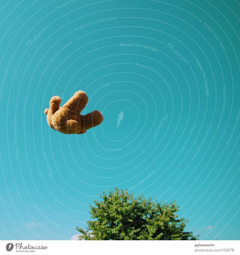Flying Teddy zum Ersten Teddybär Fell braun Stofftiere Quaste weich Baum grün Sommer Wolken Schwung Spielzeug Plüsch Spielen fliegen Himmel blau Bewegung skuril