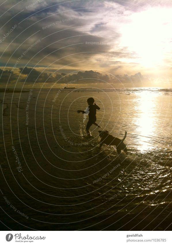 sunset fun Kinderspiel Sommer Sommerurlaub Strand Meer Mensch maskulin Junge Kindheit Körper 1 3-8 Jahre Tanzen Wasser Himmel Wolken Nachthimmel Horizont