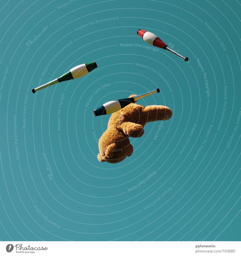 Flying Teddy zum Dritten Teddybär Fell braun Stofftiere Quaste weich Baum grün Sommer Wolken Schwung Spielzeug Plüsch jonglieren Keule Zirkus Akrobatik Jongleur