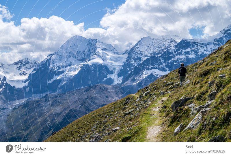 Ortler Mensch Himmel Natur Ferien & Urlaub & Reisen Sommer Erholung Landschaft Wolken Ferne Berge u. Gebirge Bewegung Gras Freiheit maskulin Erde Tourismus