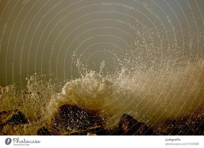 Meer Gischt Wellen Sturm Leidenschaft Kraft dunkel Unwetter Farbe Strand Küste Wasser Stein spritzen Wassertropfen Himmel Wildtier Erfrischung