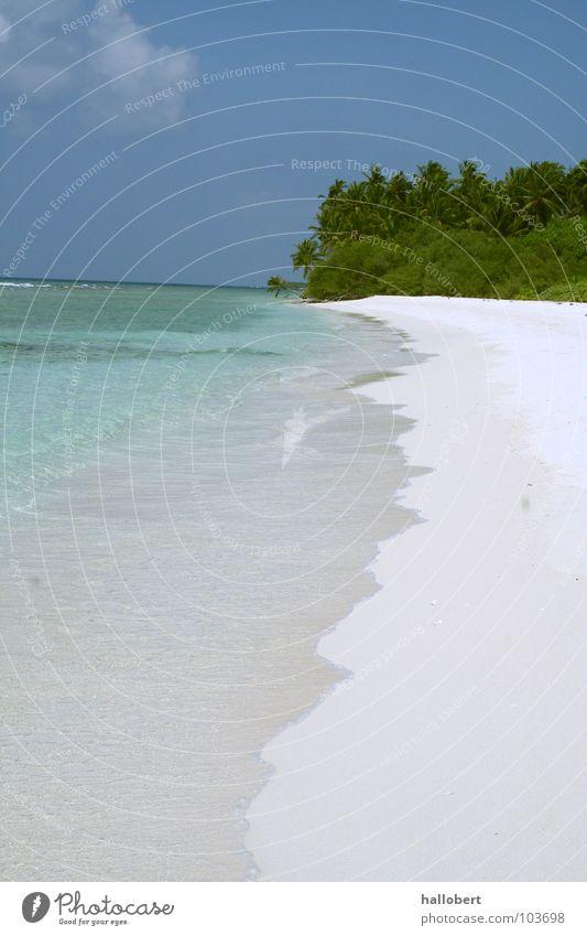 Malediven Beach 01 Wasser Meer Strand Ferien & Urlaub & Reisen Sand Küste