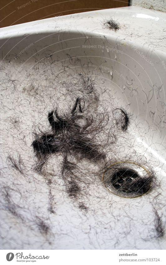 Neue Frisur Sommer Haare & Frisuren neu Vergänglichkeit Fell Dienstleistungsgewerbe machen obskur Friseur langhaarig Anschnitt kurz Waschbecken Scheitel Tarnung