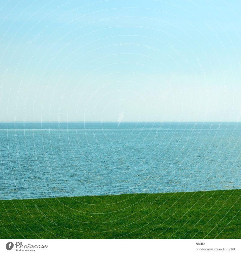 Große Weite Meer grün Gras Küste Ferne leer Neuwerk Sommer Teilung dreifarbig Wasser Nordsee blau Rasen Himmel Insel