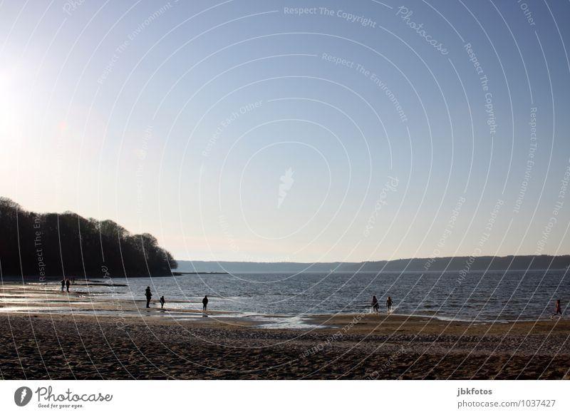 OSTSEESTRAND Umwelt Natur Landschaft Urelemente Wolkenloser Himmel Sonne Sommer Wetter Schönes Wetter Küste Seeufer Strand Bucht Nordsee Ostsee frisch kalt