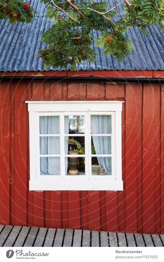 Fischerhütte Baum Fischerdorf Haus Einfamilienhaus Bauwerk Gebäude Architektur Fassade Fenster Holz Häusliches Leben alt Freundlichkeit Fröhlichkeit blau rot