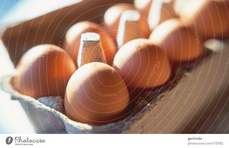 Eier Ernährung Lebensmittel Ei