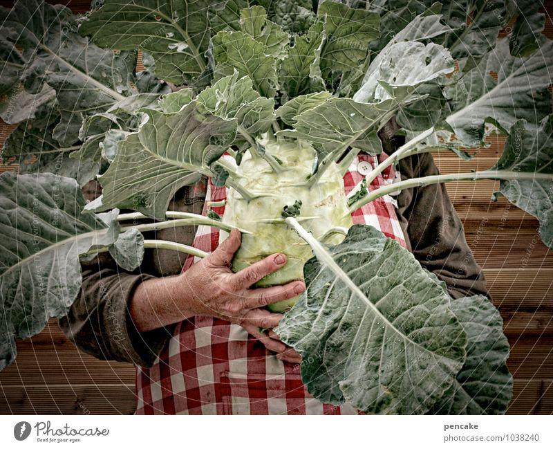 missverständnis | samenwahl Lebensmittel Gemüse Gesundheit Freizeit & Hobby Häusliches Leben Erntedankfest Mensch feminin Körper 1 45-60 Jahre Erwachsene Natur