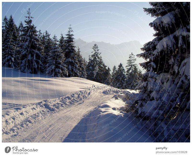 Winterspaziergang Garmischer Alpen Himmel Natur schön Landschaft Berge u. Gebirge Schnee Hintergrundbild Ausflug Tanne Bayern traumhaft Baum Winterstimmung