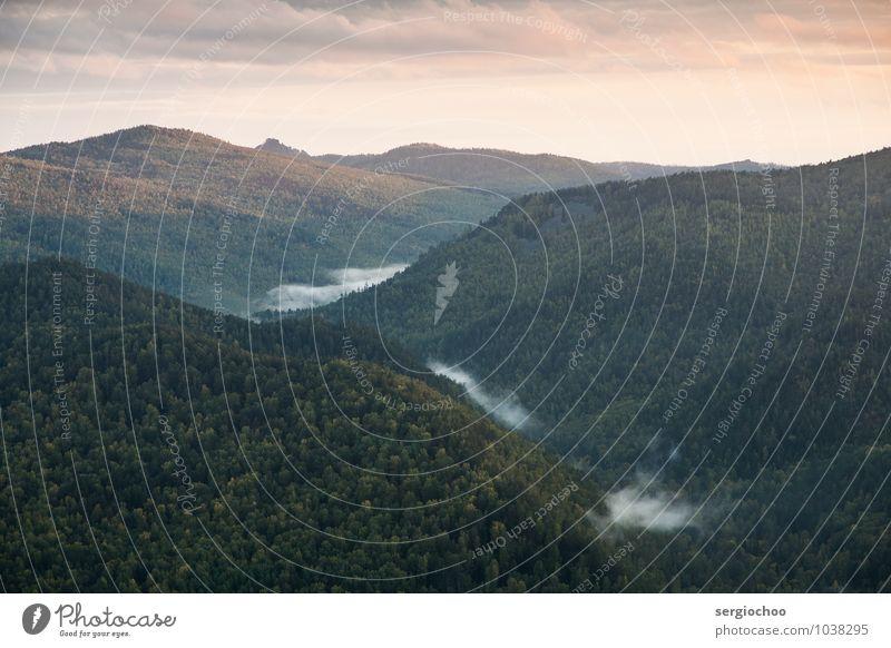 Himmel Natur Sommer Einsamkeit Landschaft Wolken Wald Berge u. Gebirge Liebe Felsen Nebel Fröhlichkeit Hoffnung Hügel Klettern Bergsteigen