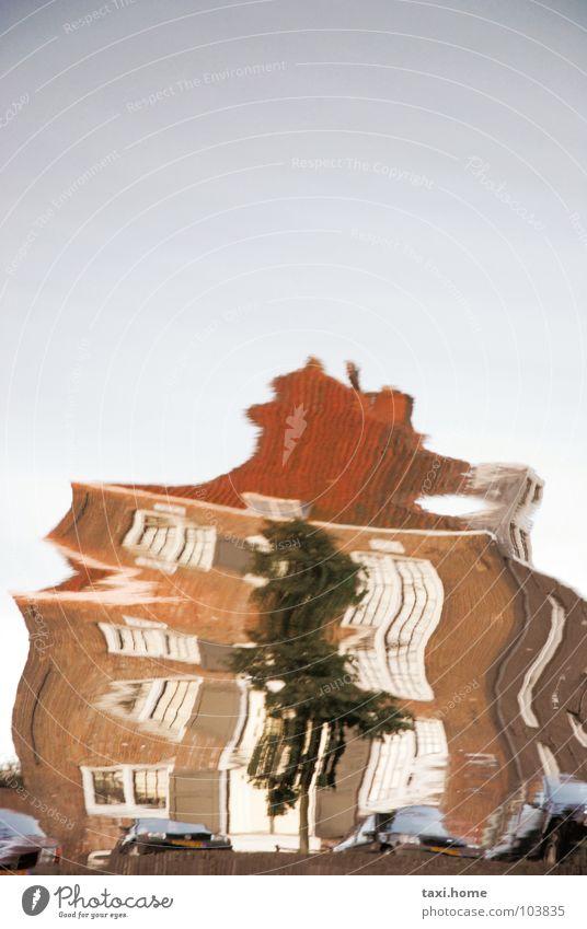 Stoned Himmel Wasser Ferien & Urlaub & Reisen Baum Sommer Haus Fenster PKW Wellen Perspektive Dach Fluss Verkehrswege Flussufer Rauschmittel Meinung