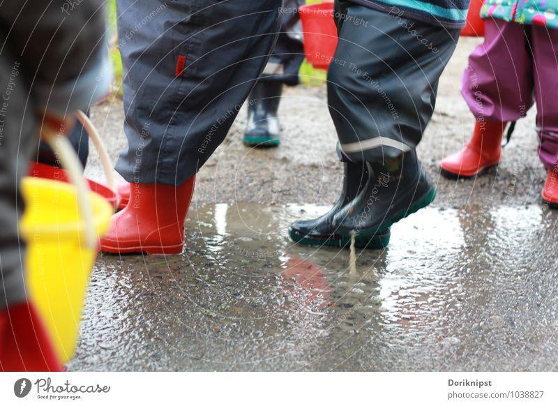 Pitsch Patsch Freude Spielen Mensch Kleinkind Fuß 1-3 Jahre Herbst schlechtes Wetter Gummistiefel Bewegung entdecken genießen einfach Zusammensein lustig grau